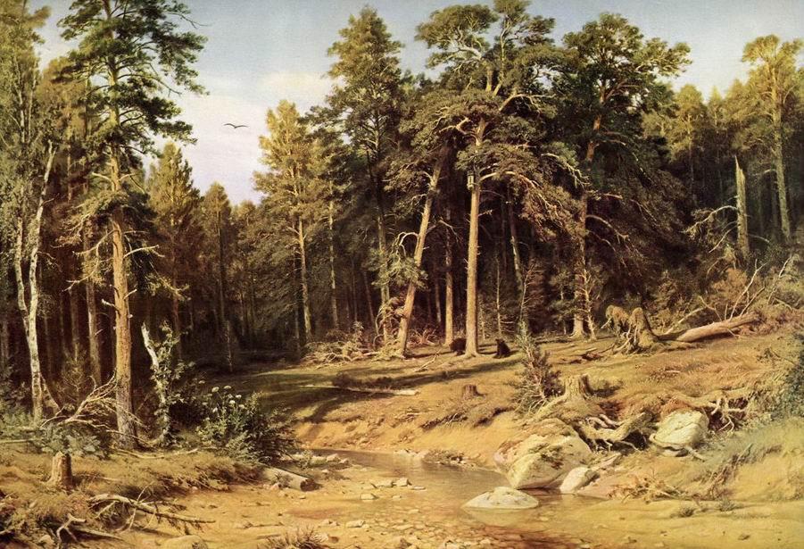 《松树林》