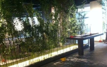 南京六朝博物馆8月11日对外开放